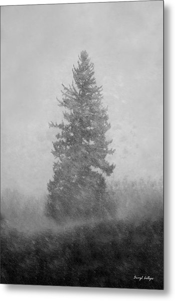 Snow Day Metal Print by Darryl Gallegos