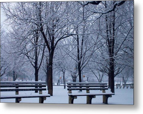 Snow Day Metal Print by Richie Stewart