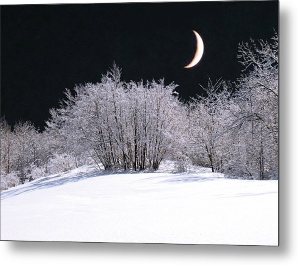 Snow In The Moonlight Metal Print by Giorgio Darrigo