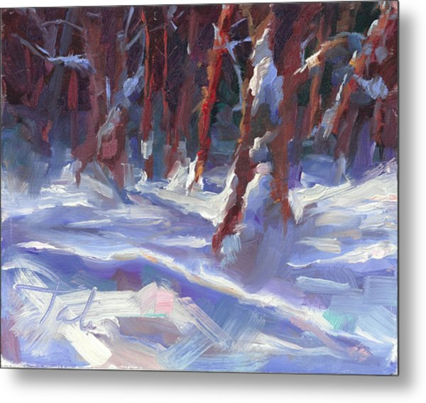 Snow Laden - Winter Snow Covered Trees Metal Print