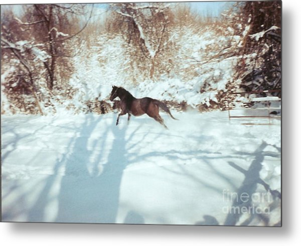 Snow Lover Metal Print