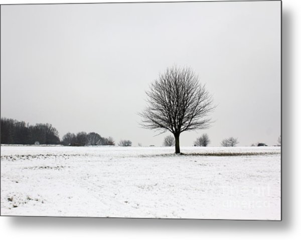Snow On Epsom Downs Surrey England Uk Metal Print