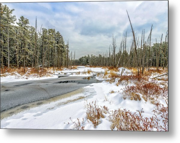 Snow On Roberts Branch Metal Print