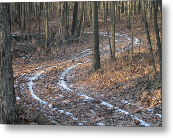 Snow Path Winding Through The Woods Metal Print by Annette Gendler