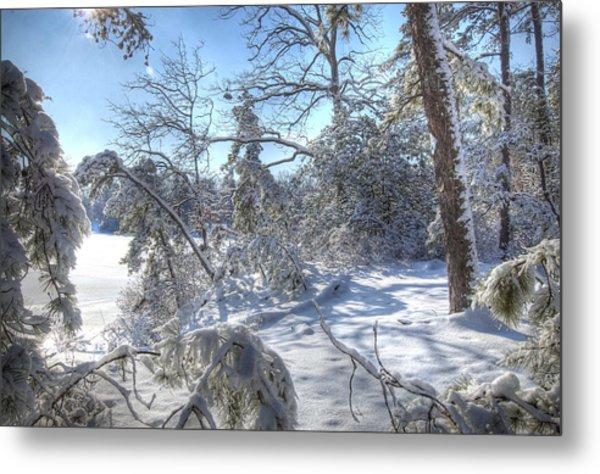 Snow Scene Lake Lenape Metal Print