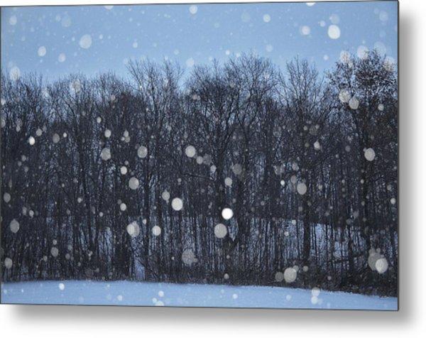 Snowfall Treeline Metal Print