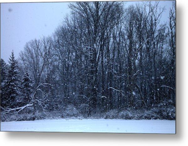 Snowing Metal Print by Barbara Giordano