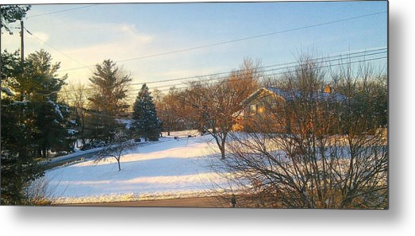 Snowy Afternoon Metal Print by Lucky Bro's