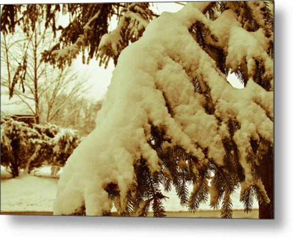 Snowy Branch Metal Print by Nickaleen Neff