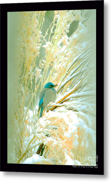 Snowy Chamisa In High Mountains Metal Print