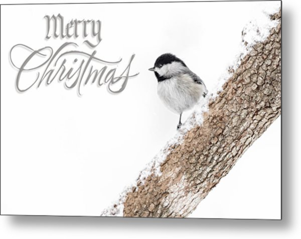 Snowy Chickadee Christmas Card Metal Print