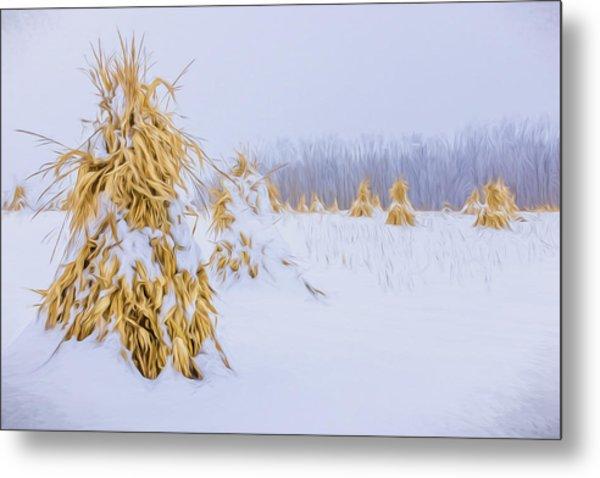 Snowy Corn Shocks - Artistic Metal Print