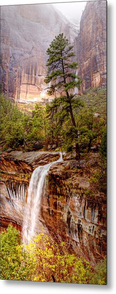 Snowy Day In Zion Metal Print by Darryl Wilkinson