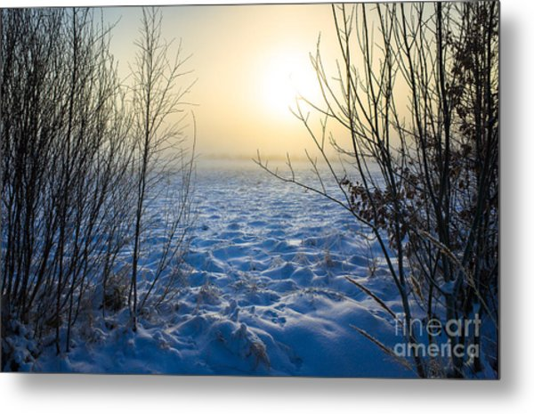Snowy Dream Metal Print
