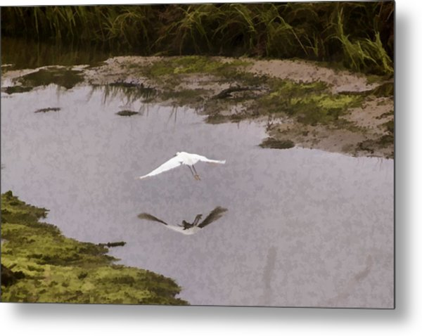Great Egret Metal Print by Photographic Art by Russel Ray Photos