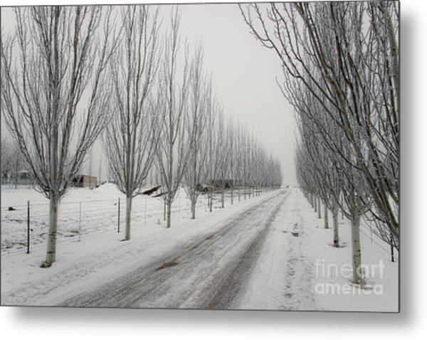 Snowy Lane Metal Print