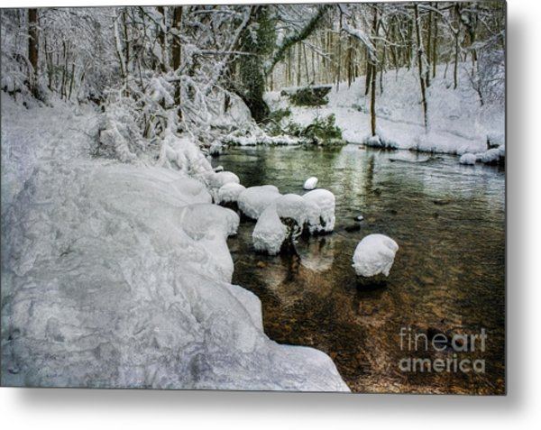 Snowy River Bank Metal Print