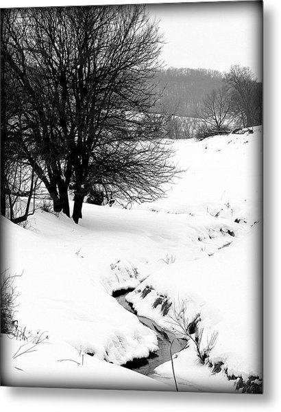 Snowy Stream Metal Print by Alexandra  Rampolla