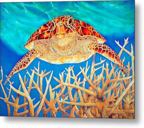Sea  Turtle Soaring Over Staghorn Metal Print