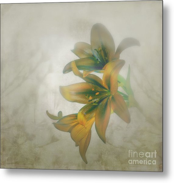 Soft And Sweet Metal Print