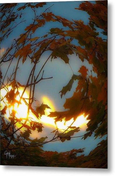 Soft Autumn Dawn Metal Print