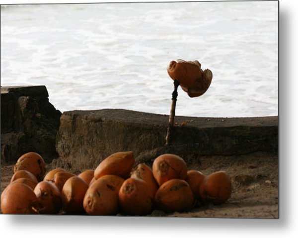 Metal Print featuring the photograph Soft Drinks by Debbie Cundy