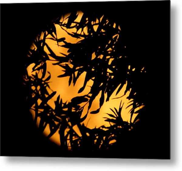Soft Moon Silhouette Metal Print