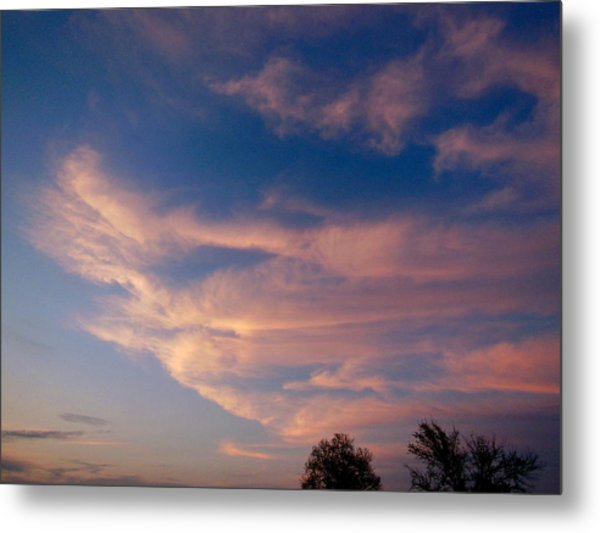 Soft Pink Clouds Metal Print by Virginia Forbes