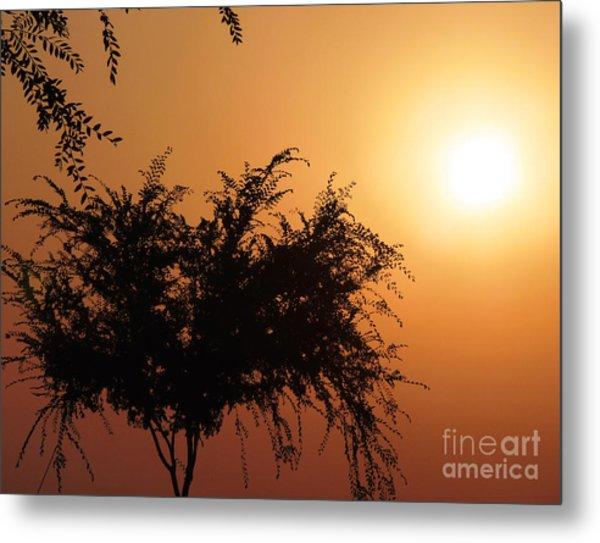 Soft Sunrise Metal Print
