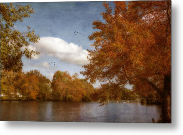 Softly Autumn Metal Print