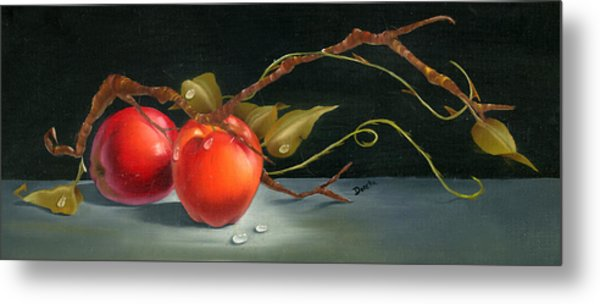 Solitary Apples Metal Print
