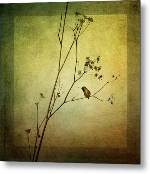 Solitary Moment Metal Print