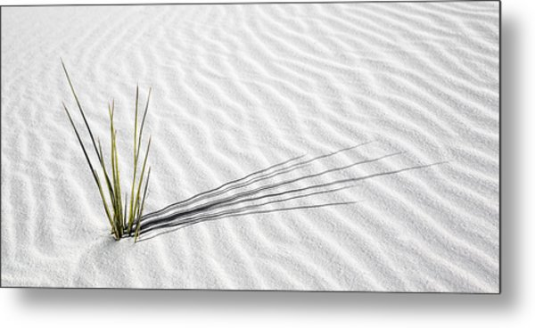 Metal Print featuring the photograph Solitude by Brad Brizek