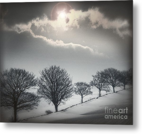 Solitude Of Coldness Metal Print