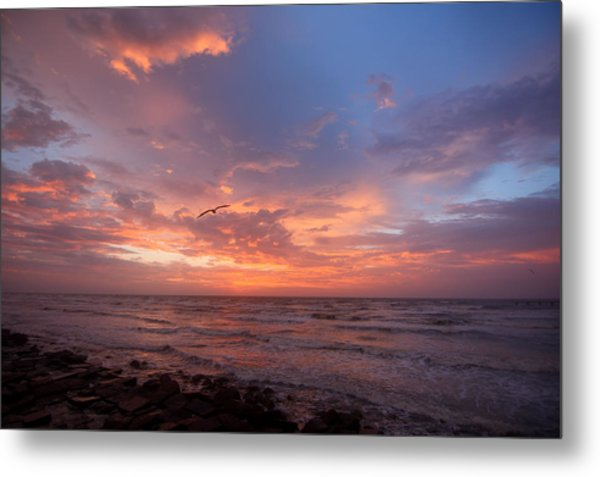 Solo Flight At Dawn Metal Print