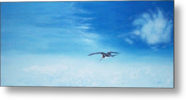 Solo Flight Metal Print by Mike Durco