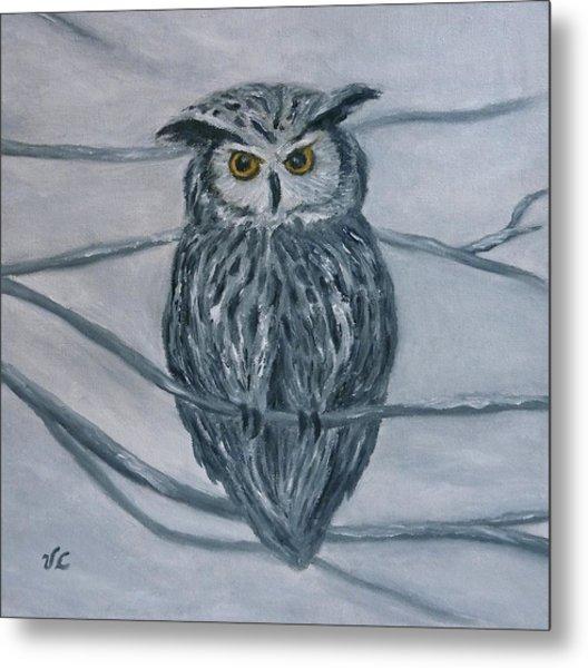 Solstice Owl Metal Print