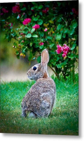 Some Bunny Loves You Metal Print