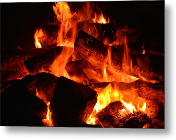 Metal Print featuring the photograph Some Like It Hot by Lisa Wooten