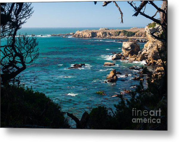 Sonoma Coast 2.2766 Metal Print by Stephen Parker