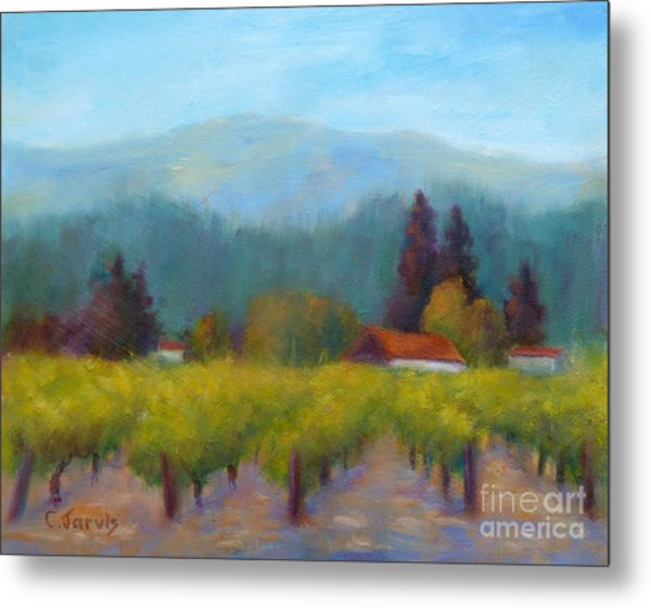 Sonoma Valley View Metal Print