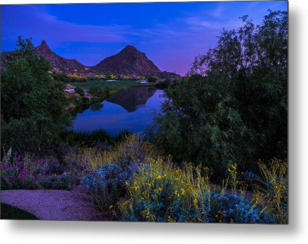 Sonoran Desert At Dusk Metal Print