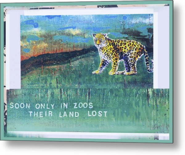 Soon Only In Zoos  Their Land Lost Metal Print by Mary Ann  Leitch