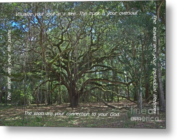Soul Tree Metal Print