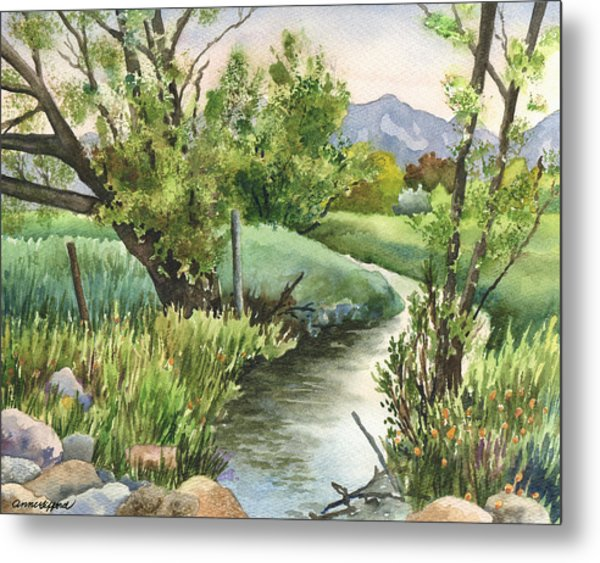 South Boulder Creek Metal Print