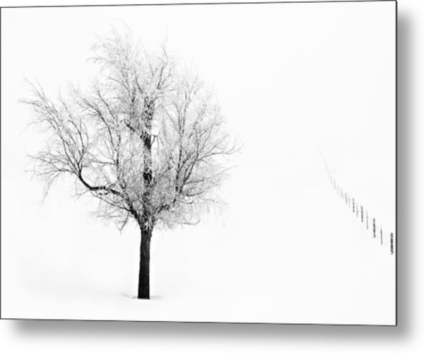 South Dakota Winter Metal Print