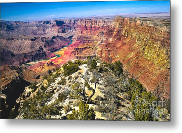 South Rim From The Butte Metal Print
