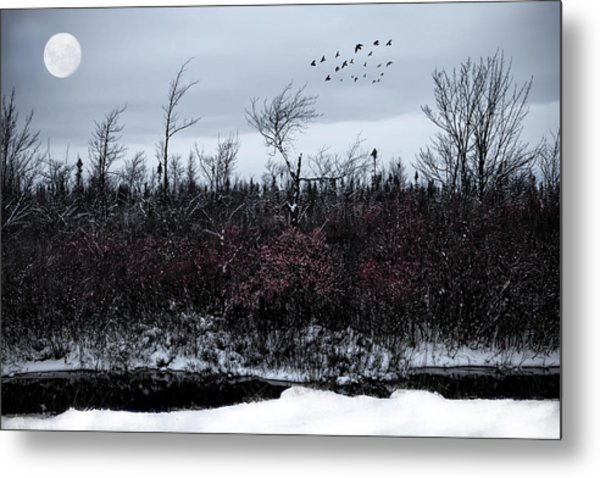 South To The Moon Metal Print