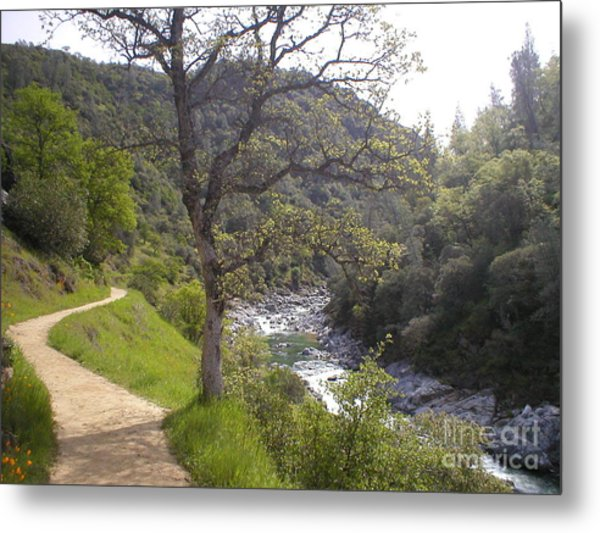South Yuba Trail Metal Print