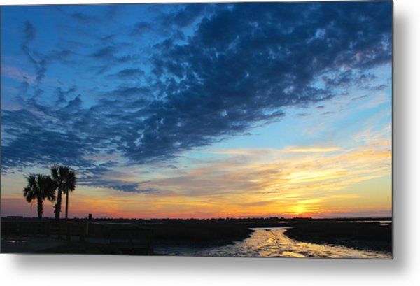 Southern Sky Metal Print by Lisa Campbell